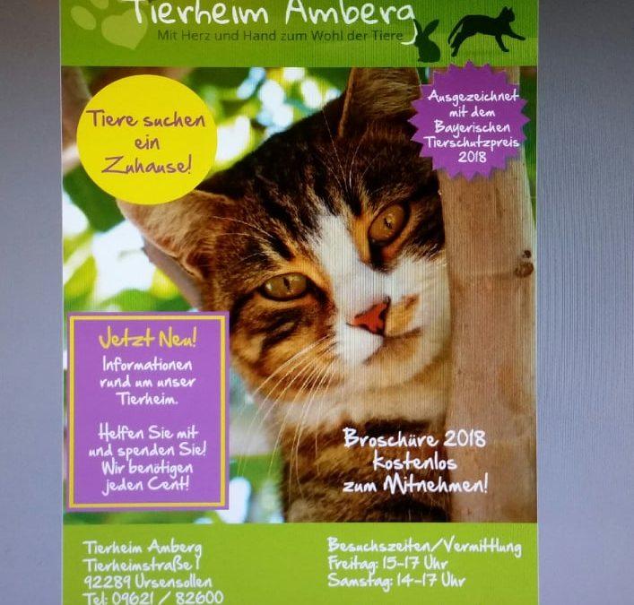 Tierheimzeitung – wir suchen dringend Sponsoren