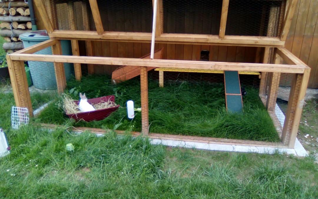 Coco und Schoko – zwei Hasen im Wohlfühl-Zuhause