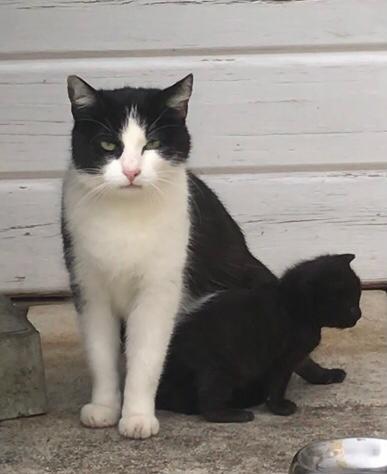 obdachlose Mama und ihr Kind